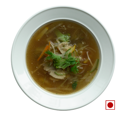 CHICKEN AND NOODLES BROTH