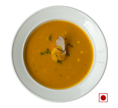 CHICKEN CARROT SOUP